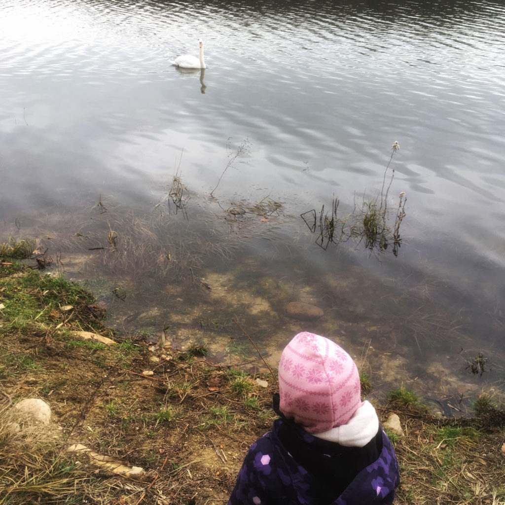 výchova príkladom, dieťa ako zrkadlo, nevyžiadané rady