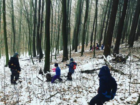 lesná škôlka, výchova príkladom