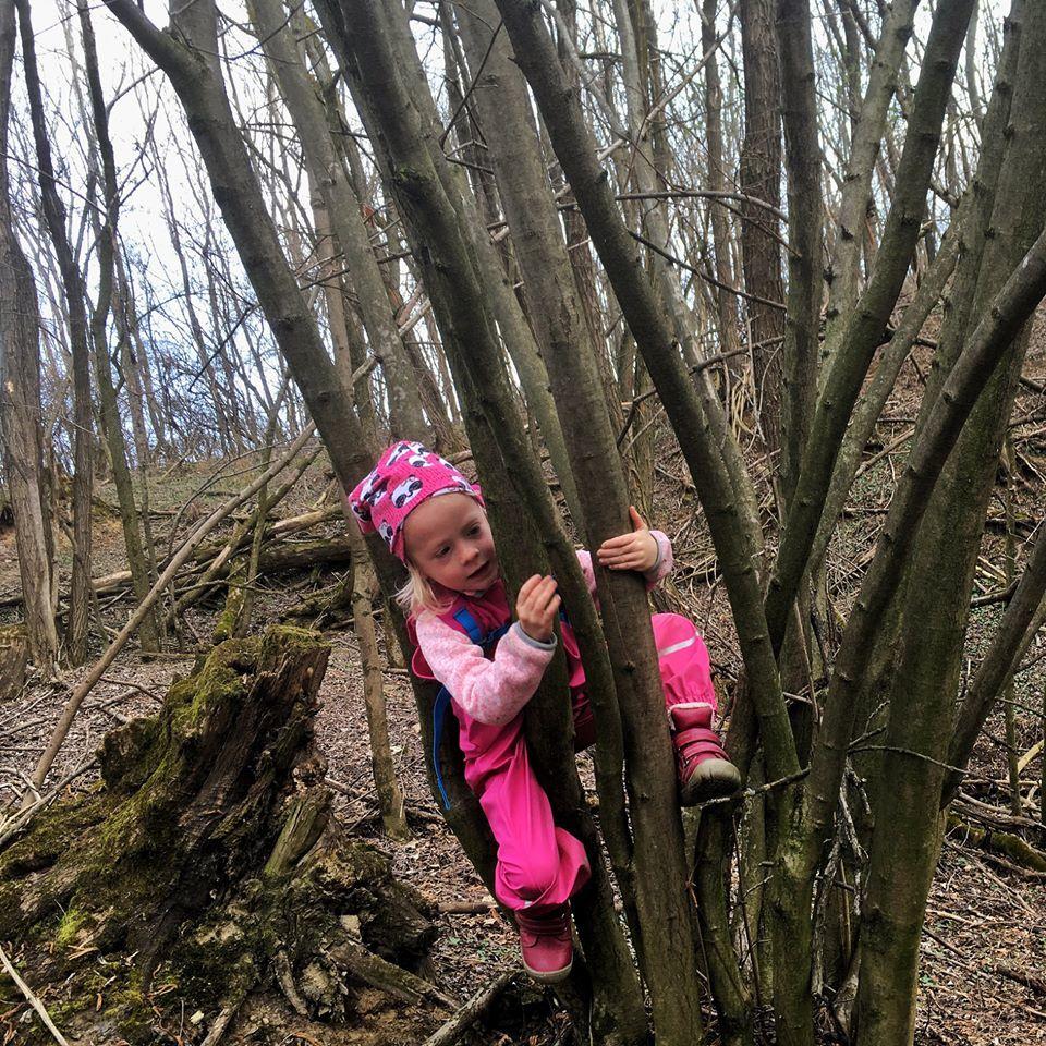 priroda, les, deti, lesna skolka